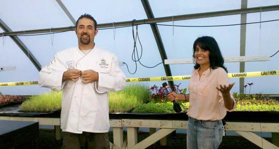 Q&A: Future Foods Farm