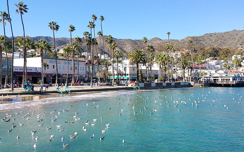 Avalon waterfront on Catalina Island - Photo by Mar Yvette