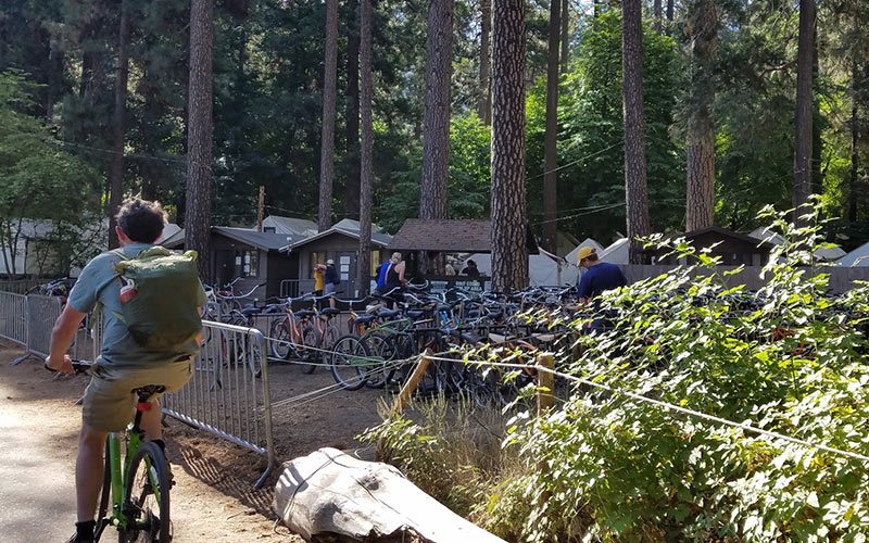 Yosemite's free shuttles can get overcrowded, so consider biking