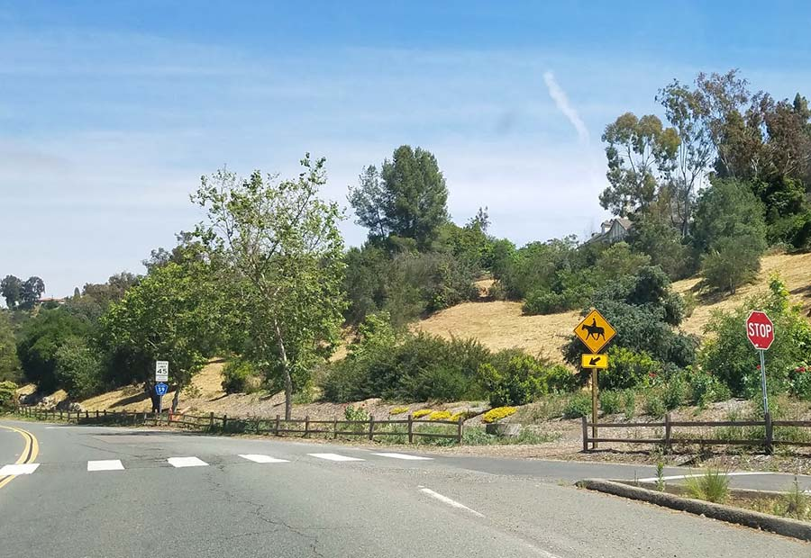 Drive to Rancho Santa Fe